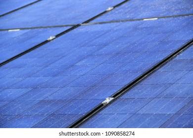 Blue Solar Panel  Array