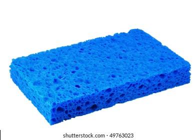 blue sponge macro