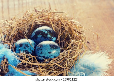 Blue spotted easter eggs in nest