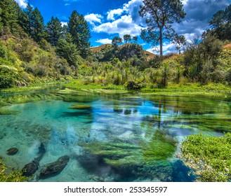 Blue spring - South Waikato, New Zealand