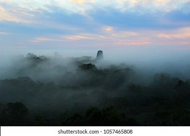 Blue sunrise at mayan temple in Tikal, Guatemala, rain forest, foggy