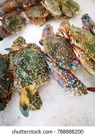 Blue Swimming Crab in the market