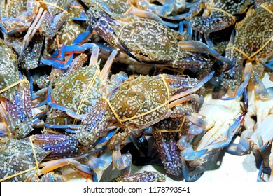 Blue Swimming Grap for sale in market.