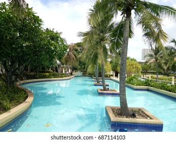 blue swimming pool and coconut tree