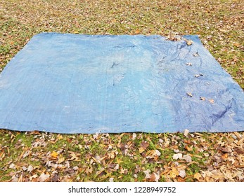blue tarp on grass or lawn with brown leaves