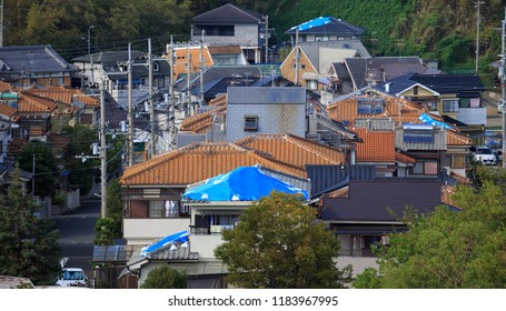 Blue tarps on roofs after typhoon Jebi