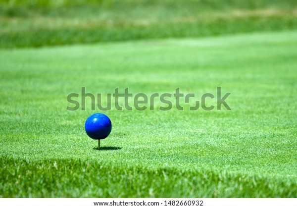 Blue Tees Marker or the back tees or championship tees, the blues represented the golf course's longest yardage.