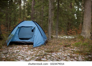 Blue tent in left part of image and coniferous  forest in background.