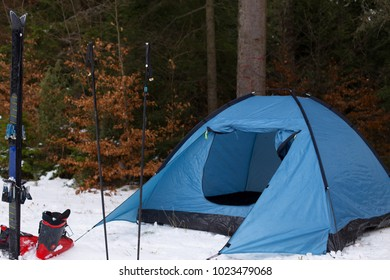 Blue tent and ski equipment on white surface of snow and green coniferous forest in background. Close shot.