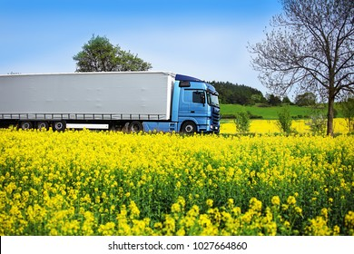 A blue truck on a road running between yellow corn