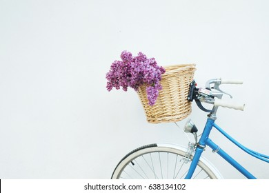 Blue vintage bicycle with basket with spring lilac flowers on white wall.