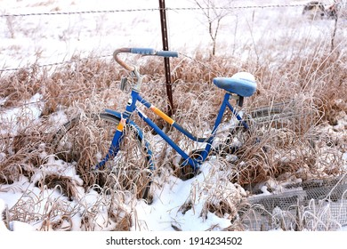 A blue vintge bicycle is resting against a barbed wire fence in a snowy winter garden.
