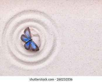 A blue vivid butterfly on a zen stone with circle patterns in the white grain sand