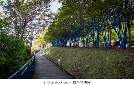 Blue walking trail along the TN River in Chattanooga, TN.