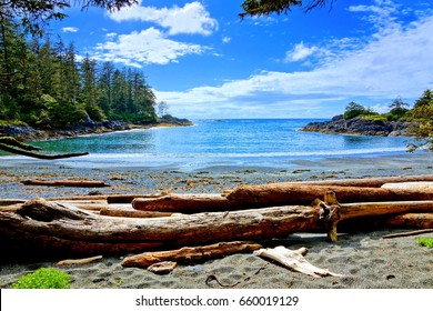 Blue water and skies along the coast of Pacific Rim National Park, Vancouver Island, BC, Canada