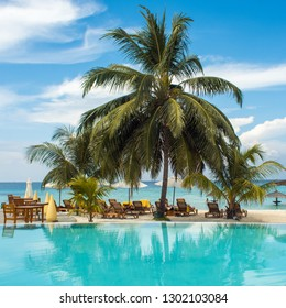 Blue water in the swimming pool and fluffy palm trees. Luxury resort on tropical iseland. Hotel terrace