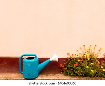 blue watering and flowers in front of the brown wall, using colorful effect edit the image and lomo style concept.