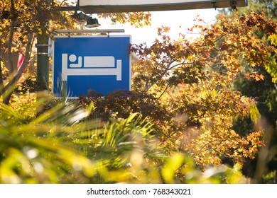 Blue and white person in bed road sign, advertising a roadside motel or hotel, surrounded by tropical plants and trees