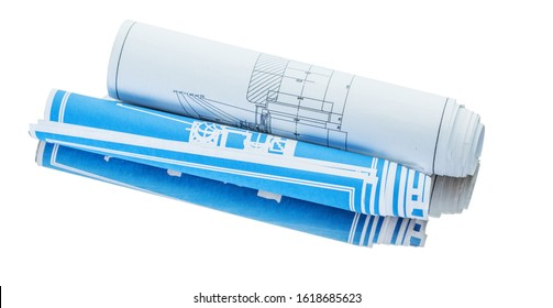 blue and white rolled blueprint isolated