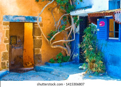 Blue and white traditional street with plants and palm trees in pots in Medina in Rabat, Morocco, Africa