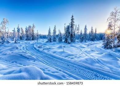 Blue winter landscape
