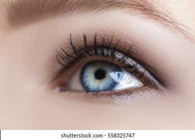 blue woman eye with beautiful brown shades