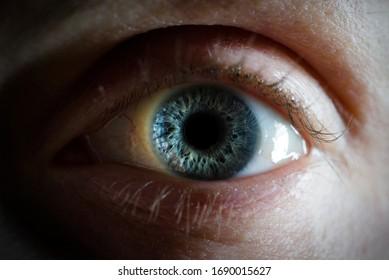blue woman eye close up - macro detail