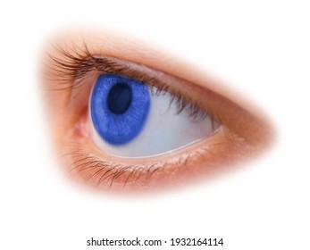 Blue woman eye isolated on white background