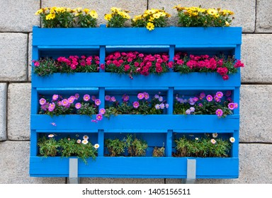 Blue wooden planter boxes with flowers on the concrete wall.