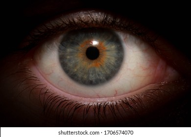 Blue and yellow eye and eyelashes