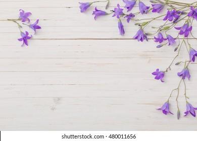 bluebell flowers om white wooden background