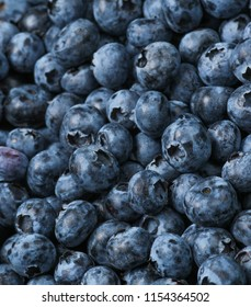 A lot of blueberries, background of berries, top view