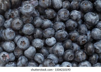Blueberries background market fresh berries