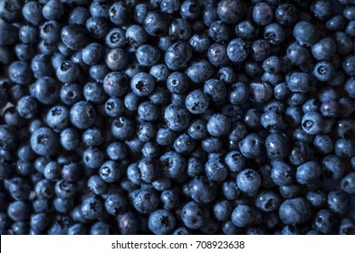 Blueberries background. Top view. Blue fresh background.