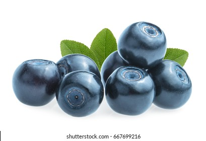 Blueberries (bilberries) isolated on white background