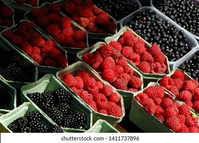 Blueberries, Blackberries  and Raspberries on sale att Hotorget market, Stockholm Sweden