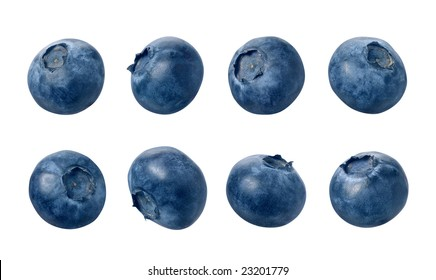 Blueberries with a clipping path, on a white background