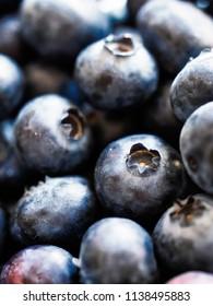 Blueberries close-up, differential focus
