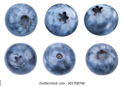 Blueberries collection isolated on white Clipping Path