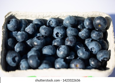 Blueberries in a cup, white background