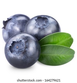 Blueberries isolated on white background. Clipping path