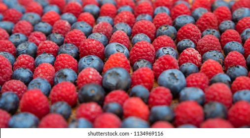 blueberries and raspberries side view, narrow depth of field