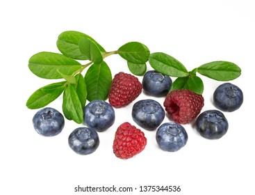 Blueberries and raspberry with a sprig with leaves on white background