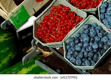 Blueberries and Red Currant on sale att Hotorget market, Stockholm Sweden