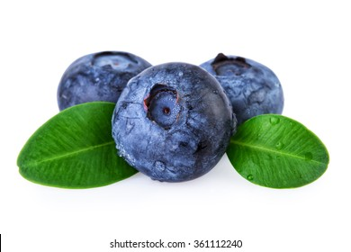 Blueberries Water Droplets Isolated