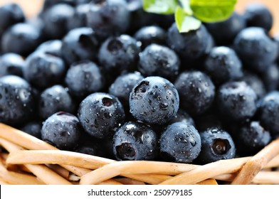 blueberries in a wicker basket on a white background