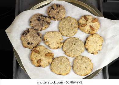 Blueberry, almond and cinnamon cocoanut cookies on baking paper on two baking sheets. A few varieties of homemade coconut cookies on pans on a stovetop.
