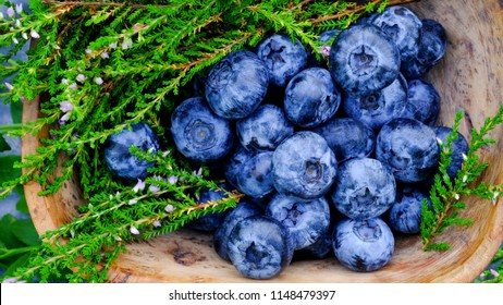 Blueberry antioxidants containing super food from Lapland. Antioxidant berries in a traditional Curly Birch wood bowl