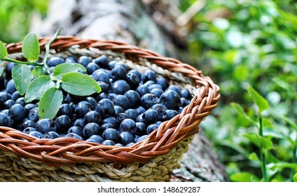 blueberry in a basket
