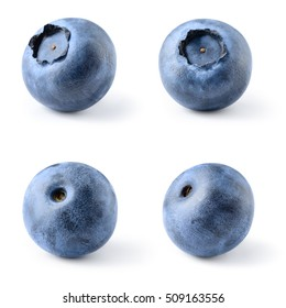 Blueberry. Bilberry. Berries isolated on white background. Collection. With clipping path.